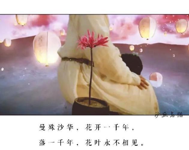 『灵魂摆渡黄泉』经典旁白,句句戳心,你最喜欢哪一句?