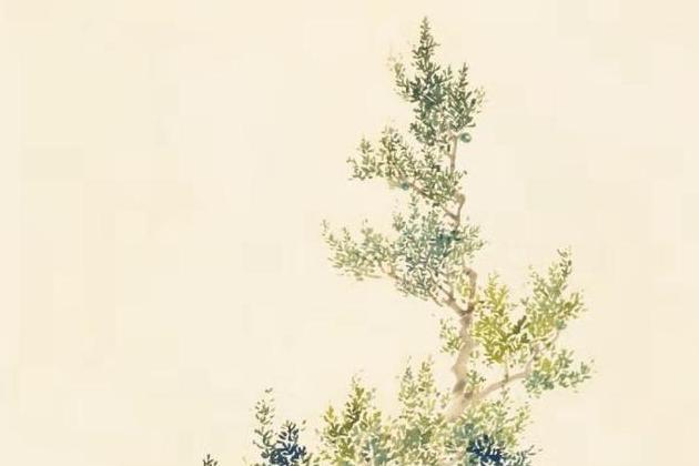 盘点《诗经》丨最古老、最唯美的文字与草木(一)