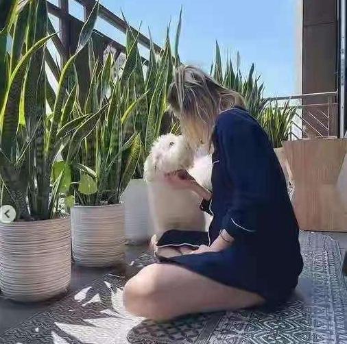 致爱狗人士:狗确实是人类的好朋友,但是希望你们可以理智爱狗