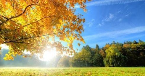 这些描写秋天的精美好词好句好段落,孩子作文肯定用得上!