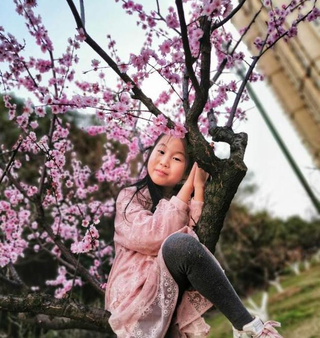桃花正浓,需要放风