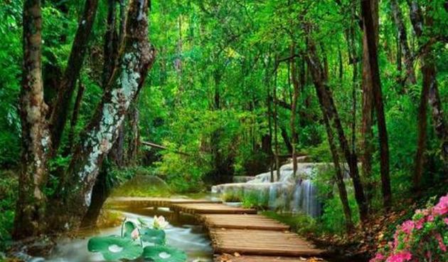苏轼一首冷门的词,看透官场险恶,更知小桥流水的美好
