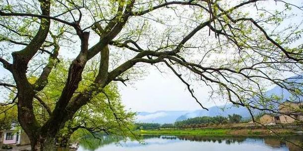富有哲理的优美句子:相信一个有爱的地方,就是世界上最美的地方
