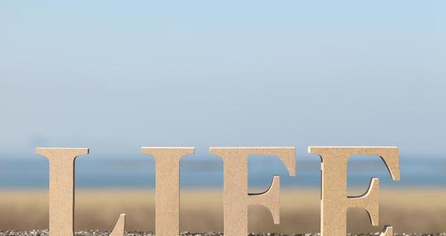 10句特别阳光的英语句子,温暖一整个冬天