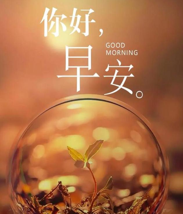 早安问候语正能量,唯美早安心语:愿每个独走夜路的你都足够坚强