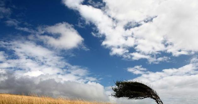 语文贵在平时积累,自然素材第一讲:描写风的好词好句好段集萃